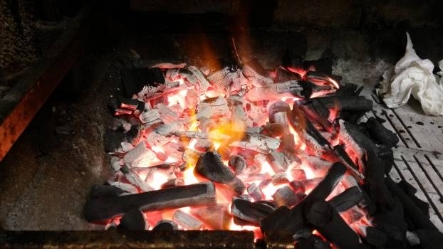 Barbecue Goldfish Fire Free Photo