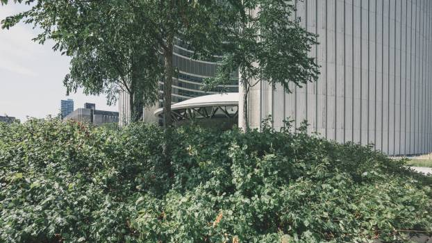 Garden Fence Picket fence #10902