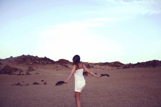 Dune Sand Landscape #10968