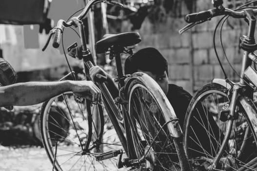 Bicycle Carriage Wheelchair Free Photo