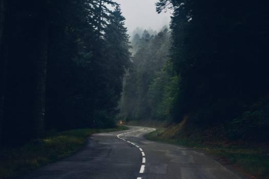 Way Road Highway Free Photo