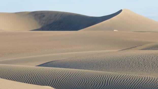 Dune Sand Soil #11029