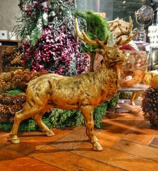 Deer Caribou Design #110303