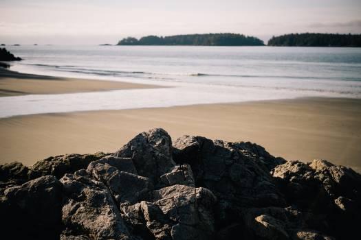 Ocean Shore Sea #11043