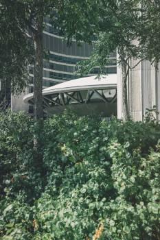 Fence Garden Park #11126