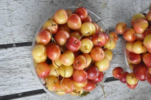 Fruit Food Apple Free Photo