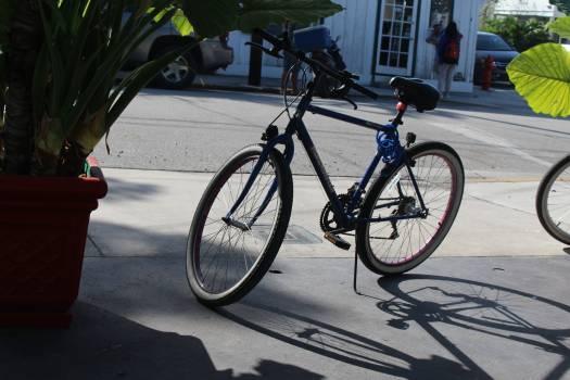 Bicycle Bike Cycle Free Photo