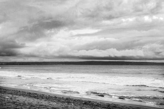 Ocean Beach Sea #11230