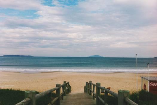 Beach Sea Shore #11259