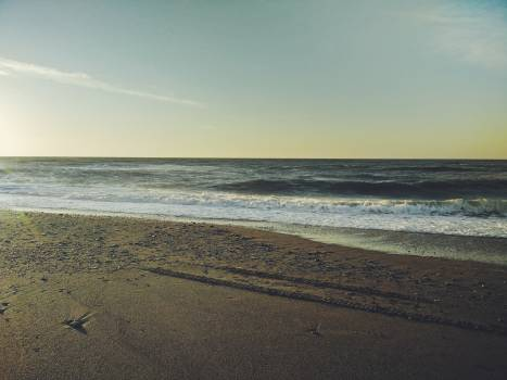 Beach Ocean Shore #113257