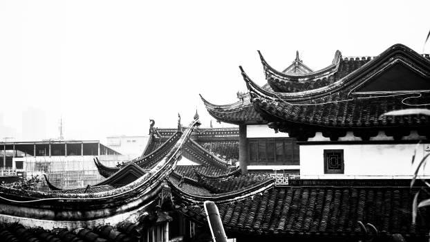 Temple Building Architecture #113988