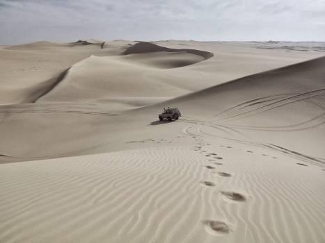 Dune Sand Soil #11476