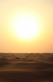 Sun Sunset Sunrise #11480