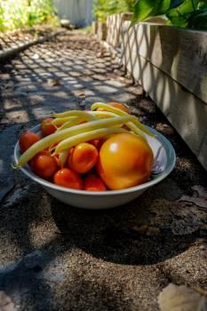 Fruit Edible fruit Tomato Free Photo