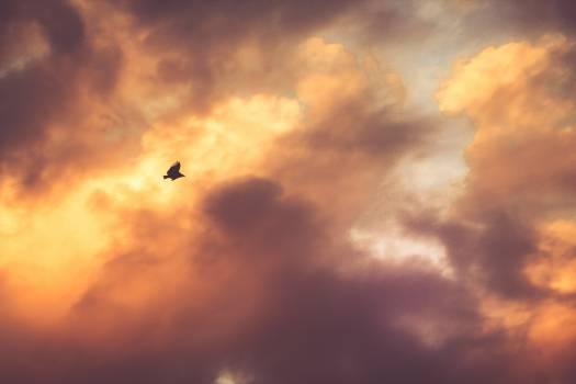 Atmosphere Sky Sun #11545