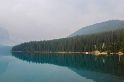 Shore Landscape Lake #115631