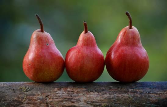 Pear Edible fruit Fruit #115945
