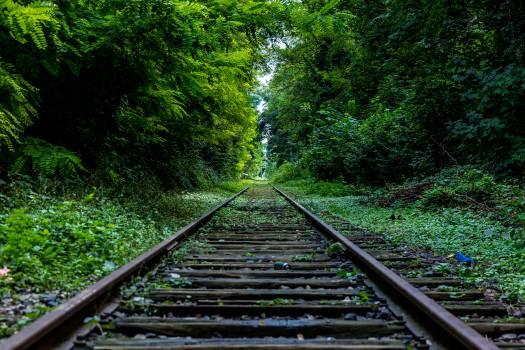 Track #11666