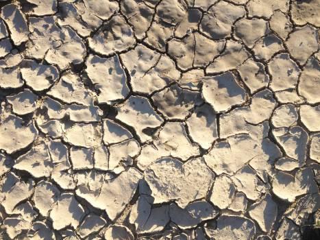 Texture Stone Rough Free Photo