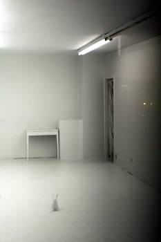 Floor Wall Interior Free Photo