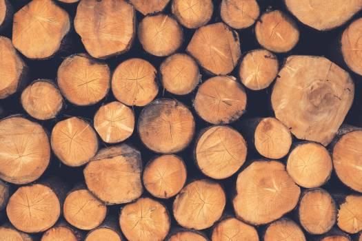 Spice Nut Brown #117399