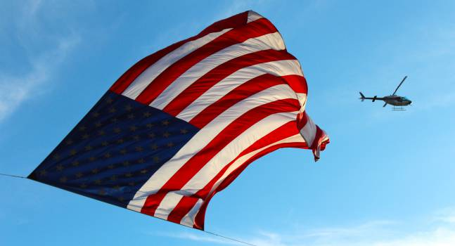 Emblem Flag Flagpole #11843