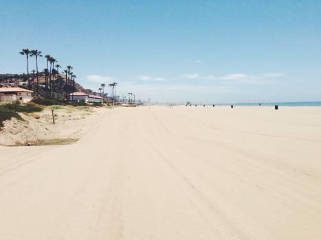 Dune Sand Beach #11850