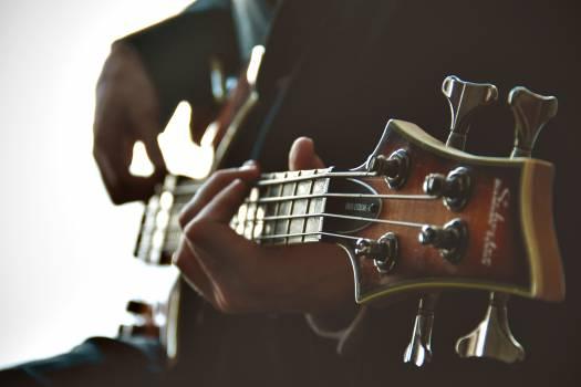 Guitar Stringed instrument Bass #11861