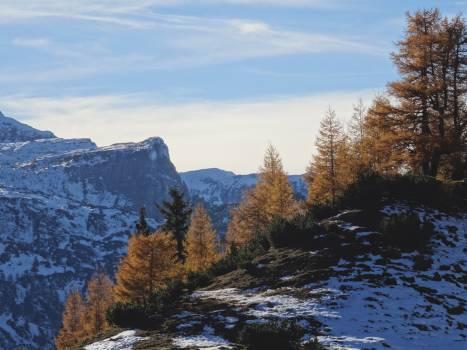Landscape Mountain Valley #11887