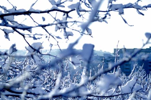 Ice Cold Liquid Free Photo