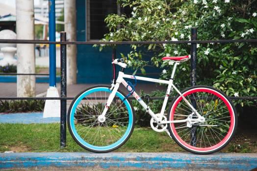 Bicycle Wheeled vehicle Vehicle #119641