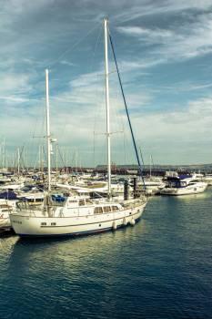 Sailboat Marina Catamaran #11983