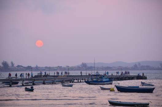 Boat Marina Shoreline #120010