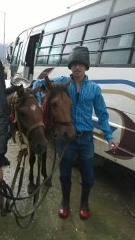 Trainer Cowboy Man Free Photo