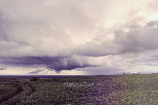 Plain Sky Landscape #12215