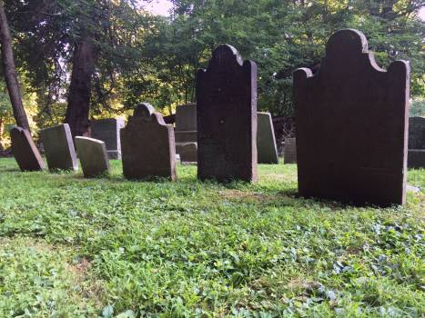 Cemetery Site Tract Free Photo