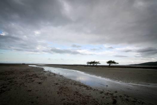 Beach Sea Shore #123917