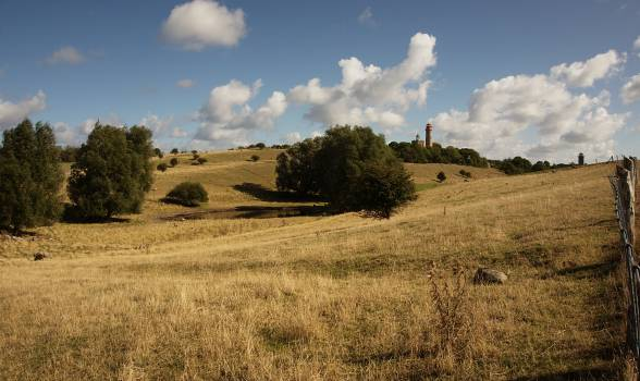 Field Landscape Sky #12394