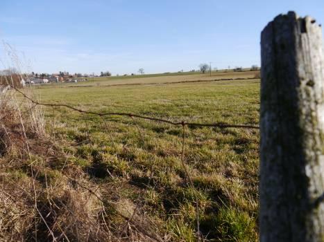 Field Landscape Rural Free Photo