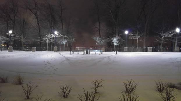 Snow Winter Cold #124298