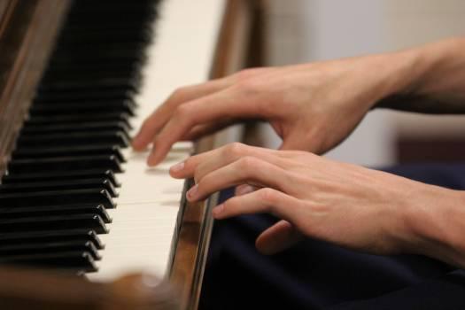 Piano Keyboard instrument Keyboard Free Photo