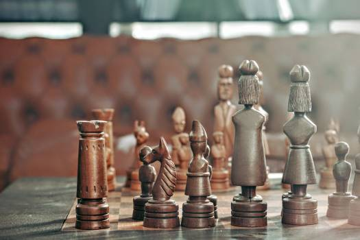 Man Success Chess Free Photo