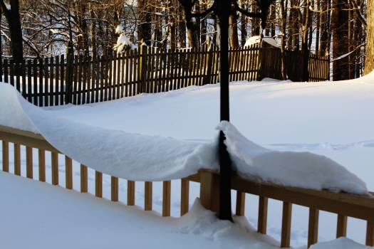 Snow Winter Weather Free Photo