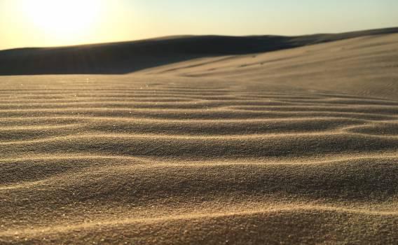 Dune Sand Soil #12711