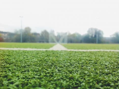 Grass Lawn Field Free Photo