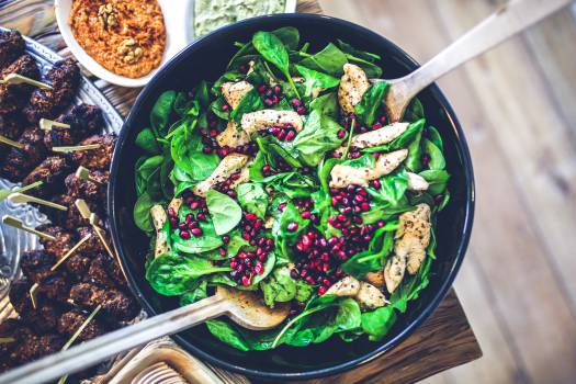 Food Bowl Dish #13091