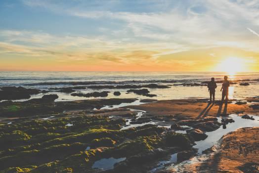 Beach Sea Ocean #13104