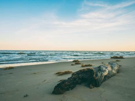 Beach Ocean Sea #131158