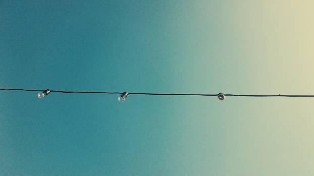 Wire Sky Fly Free Photo