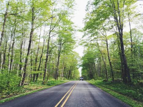 Road Asphalt Landscape #13230